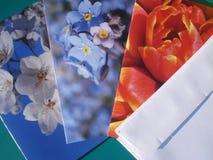 Cartes de voeux et enveloppes Photographie stock libre de droits