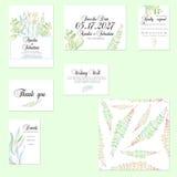 Cartes en liasse de calibre avec les branches en bon état et vertes tendres d'aquarelle Photos libres de droits