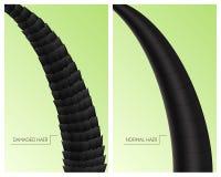 Cartes en liasse endommagées et normales de 3d détaillé réaliste de cheveux Vecteur illustration de vecteur