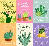 Cartes en liasse succulentes Illustration Libre de Droits