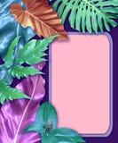Cartes en liasse verticales d'invitation avec les feuilles tropicales images libres de droits