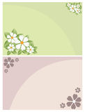 Cartes florales d'invitation Photos libres de droits