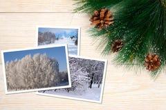 Cartes postales de nature d'hiver sur les planches en bois Photo libre de droits