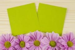 Cartes vertes vierges et fleurs roses sur le fond en bois Photographie stock libre de droits