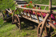 Cartful av blomkrukor Royaltyfri Bild