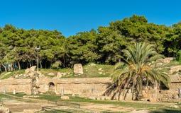 The Carthage Amphitheater, an acient Roman amphitheater in Tunis, Tunisia. The Carthage Amphitheater, an acient Roman amphitheater in Tunis - Tunisia Stock Photo