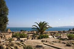 Carthage - Archaeological Park Stock Image