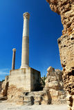 Carthage i Tunisien Royaltyfria Foton