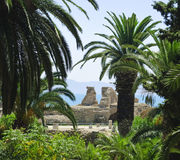 Carthage, Tunisie Photos stock