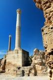 Carthage w Tunezja Zdjęcia Royalty Free