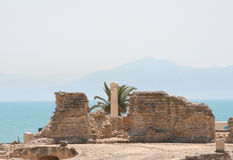 Carthago Tunisia Royalty Free Stock Image