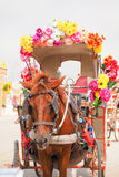 Carthorse. Horse drawn carriage decorated with flowers to serve tourists Royalty Free Stock Photo