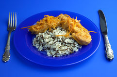 Cartilaginous fish and rice. Food on the blue background Stock Images