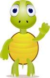cartioon绿海龟 免版税库存图片