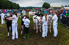 Cartmel Agricultural Show Royalty Free Stock Photography