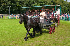 Cartmel Show 2010 Royalty Free Stock Photo