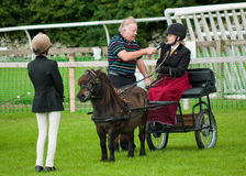 Cartmel Show 2010 Stock Photos
