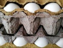 Cartón del huevo Imagen de archivo libre de regalías