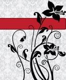 Cartão de casamento do damasco Fotografia de Stock