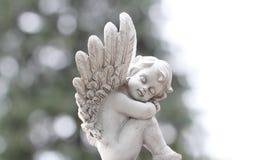 Cartão do anjo Fotos de Stock