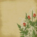 Cartão do vintage para o feriado com rosas Fotografia de Stock Royalty Free