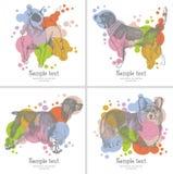Cartão dos cães Imagem de Stock Royalty Free