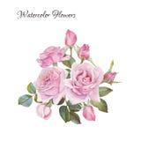 Cartão floral Ramalhete de rosas da aquarela Imagens de Stock
