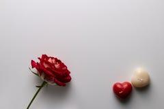 Cartão no dia do ` s do Valentim, em uma rosa e em uma vela sob a forma de Fotos de Stock