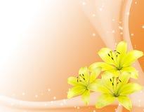Cartão romântico com flores amarelas Fotografia de Stock Royalty Free