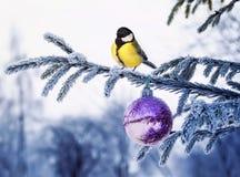 Cartolina che del nuovo anno un paesaggio naturale con un capezzolo dell'uccello sta sedendosi fotografie stock libere da diritti