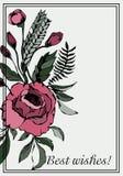 Cartolina con gli auguri riguardi Carta con le rose ramose Immagine Stock