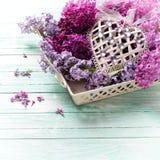 Cartolina con i fiori lilla sul vassoio e sul cuore decorativo Immagine Stock