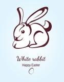 Cartolina con il coniglietto di pasqua Immagine Stock