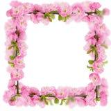 Cartolina con l'albero di fioritura della molla fresca e posto vuoto per y Fotografie Stock