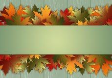 Cartolina con le foglie Fotografie Stock Libere da Diritti