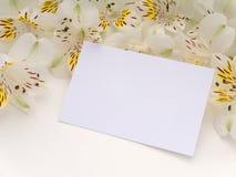 Cartolina d'auguri in bianco con i fiori bianchi di alstroemeria Immagine Stock Libera da Diritti