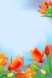 Cartolina d'auguri blu Fotografia Stock