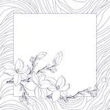 Cartolina d'auguri con i fiori della magnolia Immagine Stock