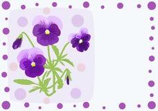 Cartolina d'auguri con i fiori della viola royalty illustrazione gratis