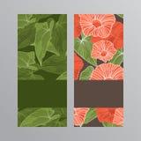 Cartolina d'auguri con i fiori Illustrazione di vettore Illustrazione di Stock