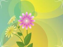 Cartolina d'auguri con i fiori, tiraggio di vettore Fotografia Stock