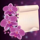 Cartolina d'auguri con l'orchidea ed il documento esotici del fiore Fotografie Stock
