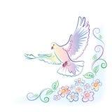 Cartolina d'auguri con la colomba ed i fiori Fotografia Stock Libera da Diritti