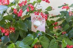 Cartolina d'auguri con spazio vuoto per testo ed i fiori intorno Fotografia Stock Libera da Diritti