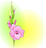 Cartolina d'auguri con un fiore illustrazione vettoriale