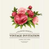Cartolina d'auguri d'annata con la peonia di fioritura ed i fiori rosa Illustrazione di vettore Fotografie Stock