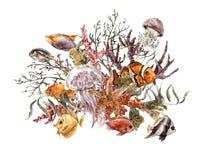 Cartolina d'auguri d'annata di vita di mare dell'acquerello di estate Fotografie Stock