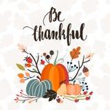 Cartolina d'auguri dell'invito/di giorno di ringraziamento, progettazione di vettore Fotografia Stock