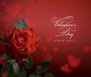 Cartolina d'auguri di arte con le rose ed il cuore rossi Fotografia Stock Libera da Diritti