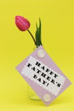 Cartolina d'auguri di giorno di padri con la foto felice delle azione del testo di giorno di padre Immagini Stock